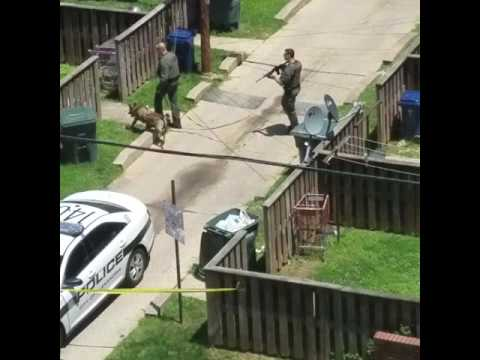 K9 unit and police search for shooting suspect Alexandria VA 6/8/2016