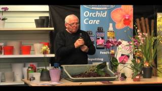 Talk from orchid expert Peter White. How to repot an orchid