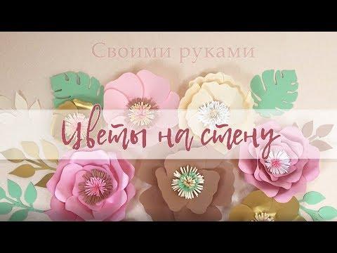 видео: Цветы на стену / Бумажные цветы Своими руками. diy giant paper flower