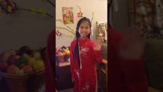 01-28-2017 -- Vlog # 17  Happy Tet! Happy Lunar New Year! Happy Year of the Rooster!