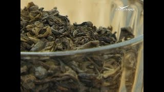 как выбрать хороший зеленый чай. Сохраняйте чек