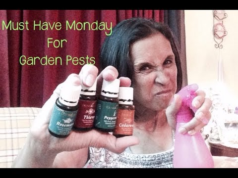 Must Have Monday For Garden Pests