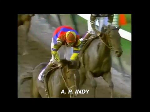 1992 Breeders' Cup Classic - A.P. Indy