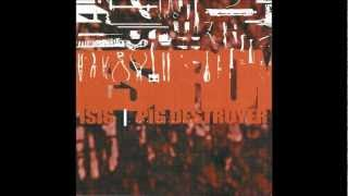 Pig Destroyer - Exhume To Consume (Carcass Cover)