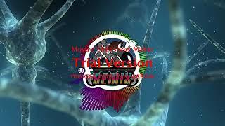 Lagu Remix Asyik   MELODY SLOW BEAT      DJ  Revan production  2k17