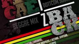 dottcom mix 36