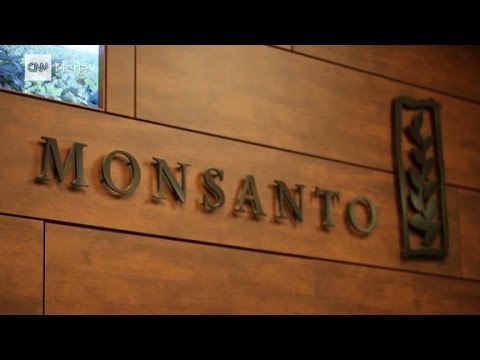 Monsanto CEO: Discussion about GMOs is 'driving me n...