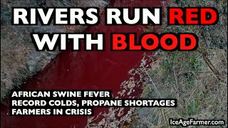 RIVERS RUN RED WITH BLOOD: ASF, Propane Crisis, Agricultural Disaster