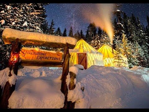 Exploring Yellowstone's winter wonderland