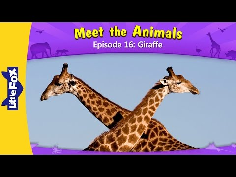 Thumbnail: Meet the Animals 16: Giraffe | Level 2 | By Little Fox