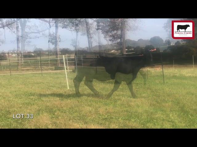 Powell Farms Lot 33