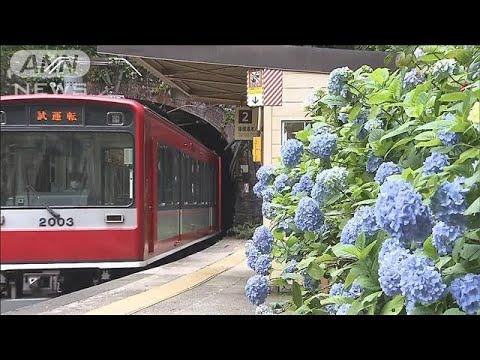 箱根 登山 鉄道 被害