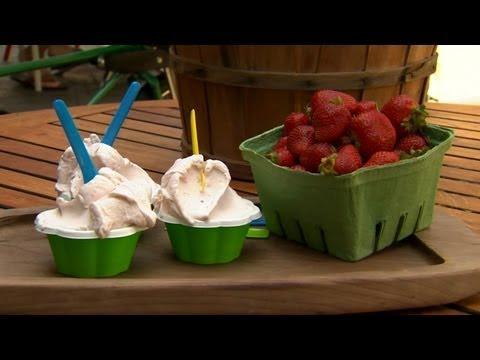 How to Prepare Strawberry Gelato   P. Allen Smith Cooking Classics