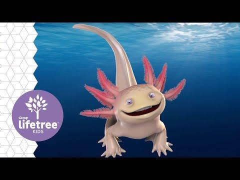 Axl the Axolotl | Buzzly's Buddies | Weird Animals VBS