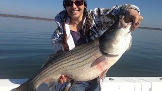 Trophy Lake Texoma Striper Slap in the Face