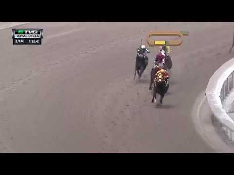 RACE REPLAY: 2017 Royal Delta Stakes Featuring Curlin's Approval