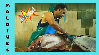 THE MALDIVES, CLEANING a 50Kg TUNA at the FISH MARKET in Malé