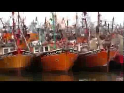 Mar del Plata 2012 - Canal 26