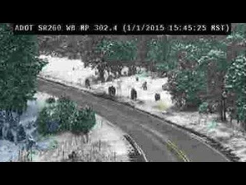 Sasquatch : Documentary on Sightings of Bigfoot around the World (Full Documentary)