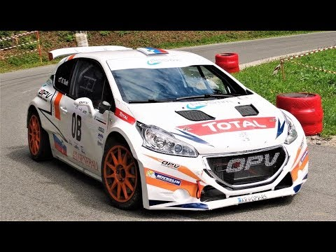 Peugeot 208 T16 R5 // Rok Turk Flat-Out Drifting