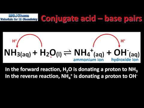 8.1 Bronsted-Lowry theory of acids and bases (SL)