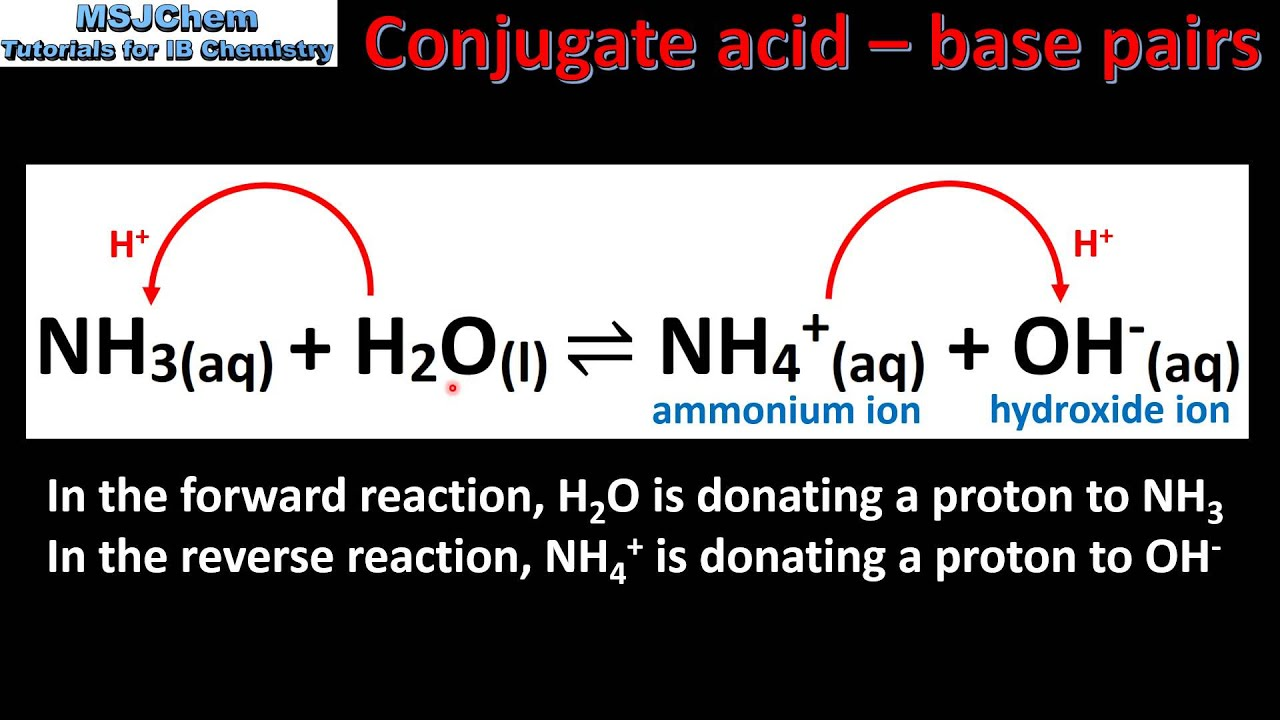 81 Bronsted Lowry Theory Of Acids And Bases Sl Youtube