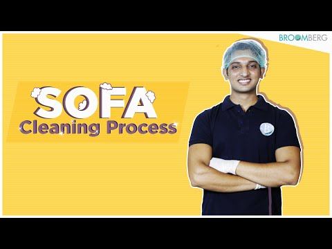 Find Out How Professional Sofa Cleaning Services Work