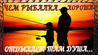 Настоящий рыбак ловит не рыбу а удачу Приколы на воде Неудачи на рыбалке Приколы на рыбалке 2020