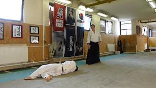 shomen uchi kaitennage (uchi kaiten)