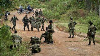 Combates entre el ELN, clan del golfo y el ejército nacional en erradicación de cultivos de coca