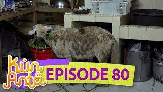 Kasian! Sayuran Mpok Siti Dimakan Kambing - Kun Anta EPS 80