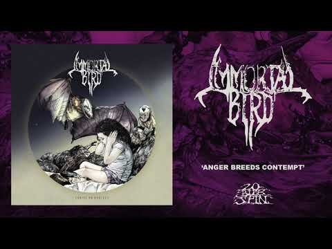IMMORTAL BIRD - Anger Breeds Contempt (From 'Thrive On Neglect' LP, 2019)