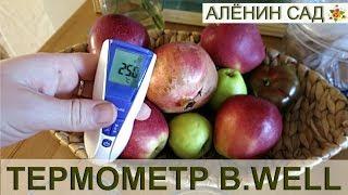 Тестую ТЕРМОМЕТР B. Well / Інфрачервоний термометр WF-5000