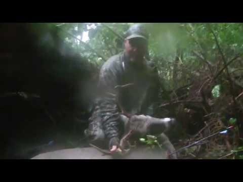 EARLY SEASON BUCK KILL | ALLEGHENY COUNTY