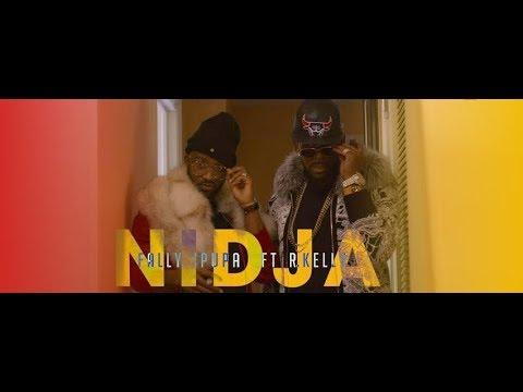 Fally Ipupa - Nidja ft R.Kelly  ( officiel videos )