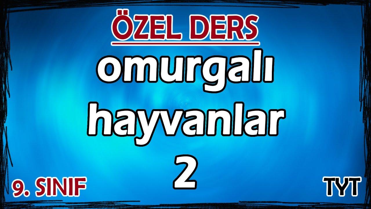 28) Hayvanlar Alemi - Omurgalı Hayvanlar 2 - Özel Ders (9. Sınıf)