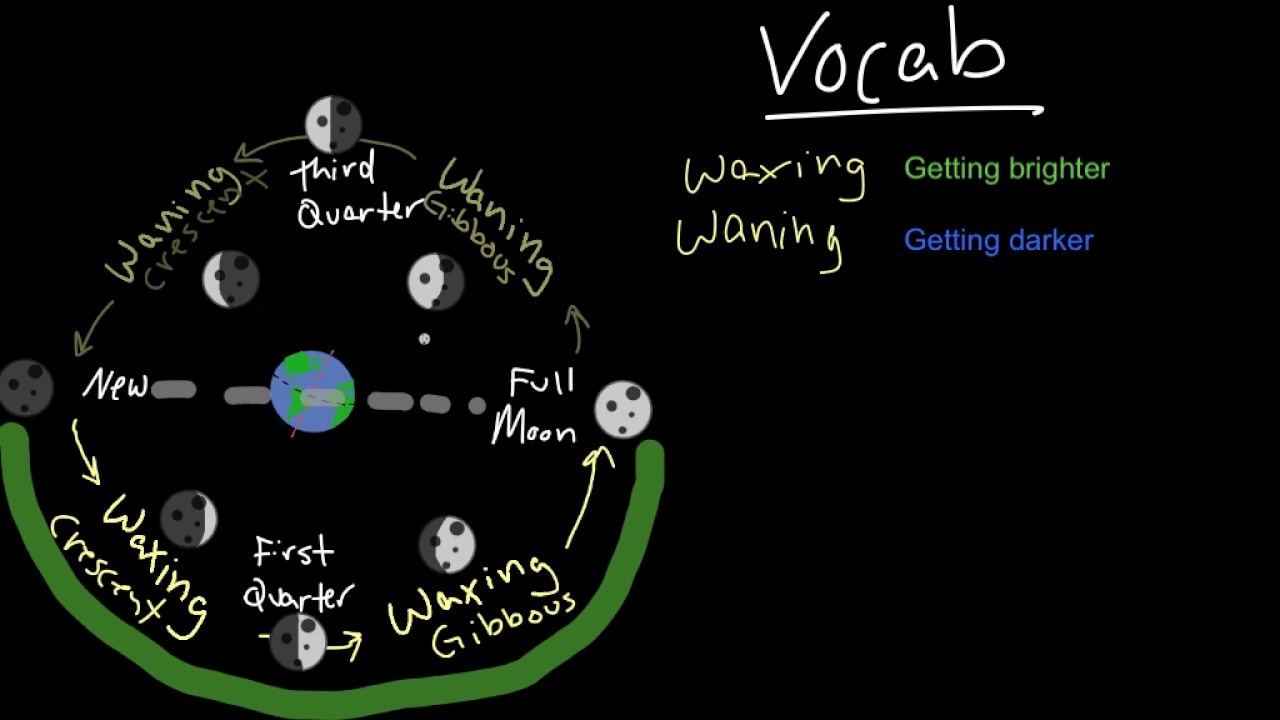 Diagram Of Moon Phases Sun Earth Trusted Wiring Diagrams Seasons Eclipses Relationship And