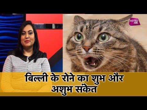 बिल्ली के रोने का शुभ और अशुभ संकेत | Manisha Koushik | Astro Tak