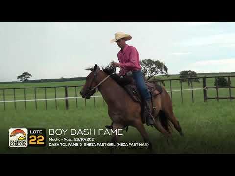 LOTE 22 - BOY DASH FAME