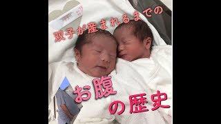 双子が生まれるまでのお腹! 高村凛 検索動画 25