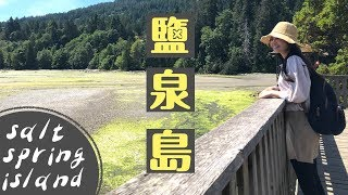 讓人念念不忘的小島 鹽泉島Salt Spring Island | Day2 Tree House cafe| Downtown Ganges| 划船
