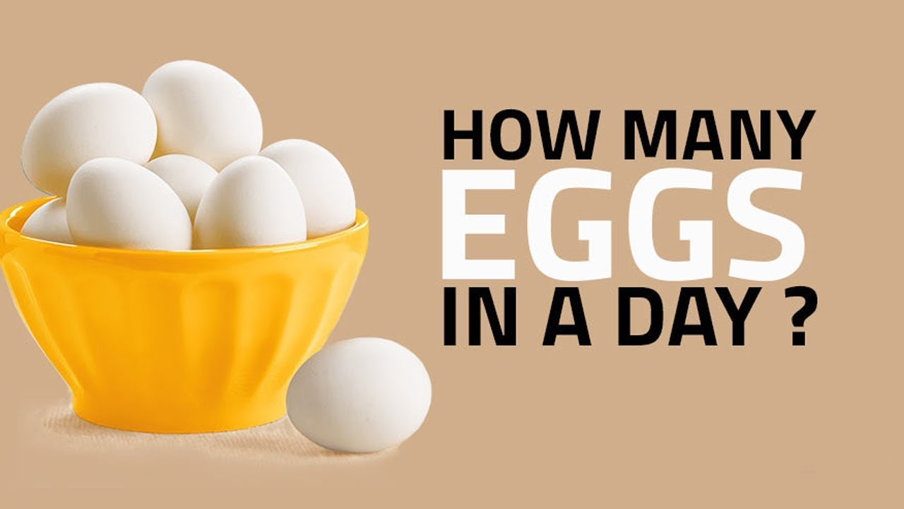 How Many Eggs a Day Should I Eat For Better Health