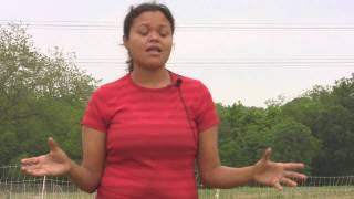 Organic Eggs Vs. Conventional Farm Eggs, Free Range Chickens, & Ethical Animal Treatment Vital Farms
