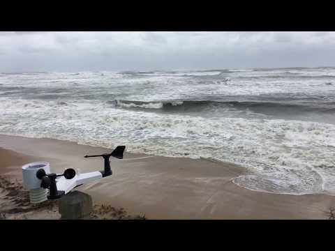 NOR'EASTER RILEY // OBX OUTER BANKS, HATTERAS ISLAND, AVON NC