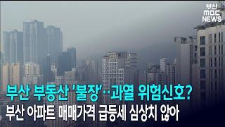 부산 부동산 '불장'.. 과열 위험신호?…