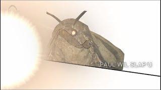 Best Moth Memes Compilation( I Love Lamp)