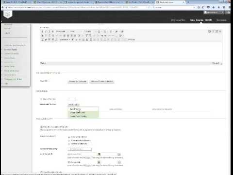 Blackboard Learn Assignments Overview