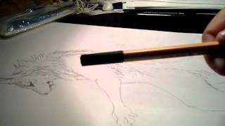 I draw : loup garou test