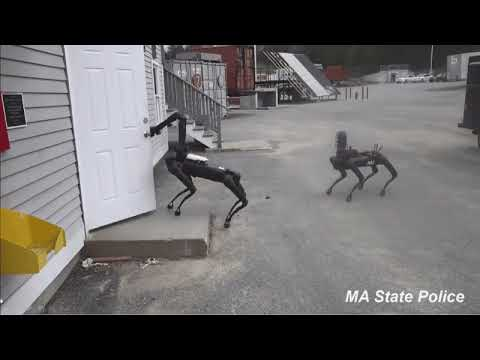 Brian Taylor - The robot police dog  (15-second video)