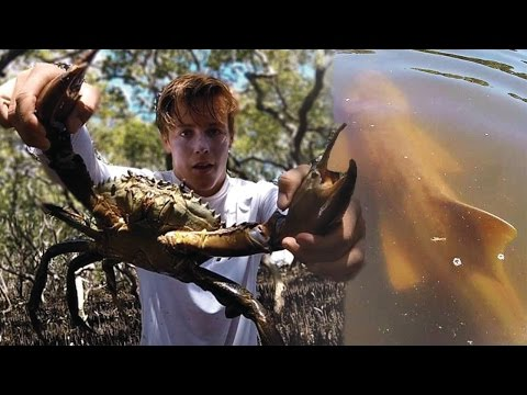 MONSTER MUDCRABS caught during SHARK ATTACK!! - Catch n Cook!